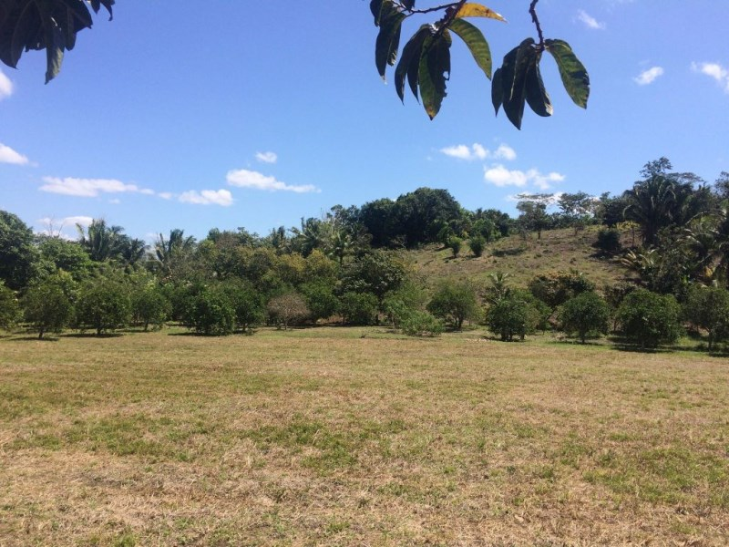 Remax real estate, Belize, San Ignacio, #2231 – 16 ACRE FARM - near SAN IGNACIO, CAYO DISTRICT