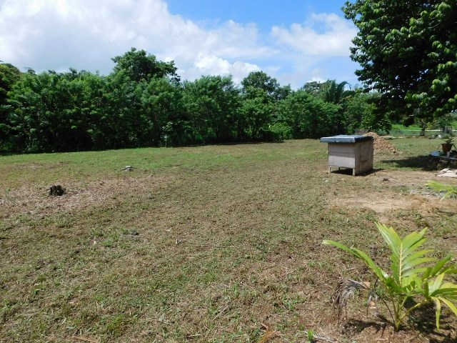 Remax real estate, Belize, Belmopan, #2250 - A RESIDENTIAL LOT IN BELMOPAN CITY, CAYO DISTRICT