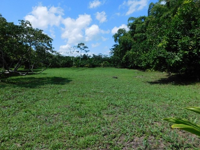 Remax real estate, Belize, Belmopan, # 2252 - 1/2 ACRE LOT - near BELMOPAN, CAYO DISTRICT, BELIZE