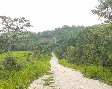 Remax real estate, Belize, San Ignacio, #2255 -  1,300 ACRES OF LAND LOCATED CLOSE TO SAN IGNACIO, CAYO DISTRICT, BELIZE.
