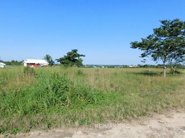 RE/MAX real estate, Belize, Belmopan, #2293 -  10 ACRES OF LAND LOCATED IN BELMOPAN, CAYO DISTRICT.