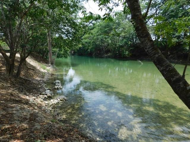 RE/MAX real estate, Belize, San Ignacio,  25 ACRES OF RIVERSIDE LAND IN SAN IGNACIO, CAYO DISTRICT.