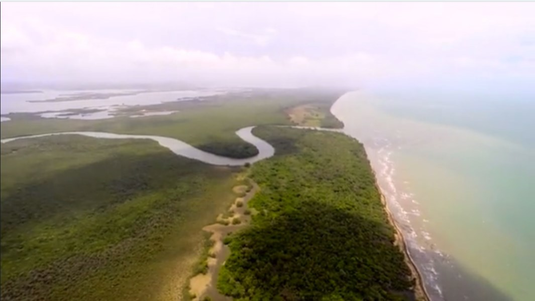 Remax real estate, Belize, Gales Point, #7002 - 100 Acres in Coconut Walk, Gales Point, Belize