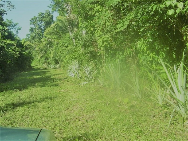 Remax real estate, Belize, Big Fall, #7048 – 17 Acres near Belcampo Lodge, Toledo