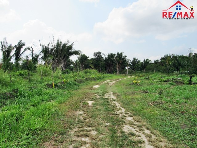 RE/MAX real estate, Belize, Belmopan, # 4004 - BELIZE OFF GRID LIVING, 3.071 ACRES OF LAND - Teakettle Village, Cayo District