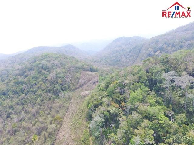 RE/MAX real estate, Belize, San Ignacio, # 4007 - BELIZE JUNGLE 91 ACRES OF LAND - CAYO DISTRICT, BELIZE