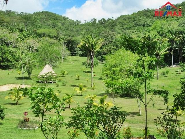 RE/MAX real estate, Belize, San Ignacio, # 4008 - 150 ACRES with FRUIT TREES, SPRING, FISH POND - Cayo District, Belize