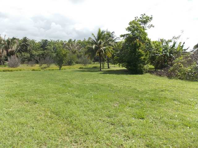 Remax real estate, Belize, Belmopan, #7006 - One Acre Property, Belmopan, Hummingbird Highway