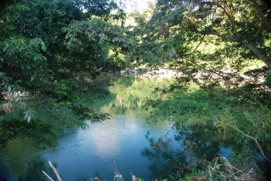 Remax real estate, Belize, Gracy Rock Bank, #7010 - 20 Acres in Gracie Rock Village