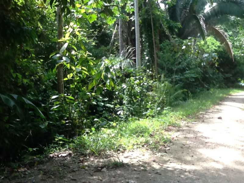 Remax real estate, Belize, Benque Viejo del Carmen, #7012 - Waterfront Lot #126 at Belize Eco Village