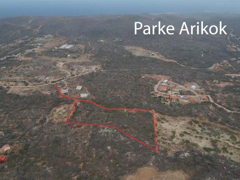 RE/MAX real estate, Aruba, Santa Cruz, Picaron Property Land
