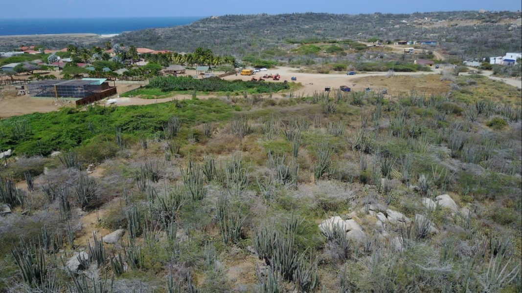 RE/MAX real estate, Aruba, Noord, Alto Vista z/n 14.000m2