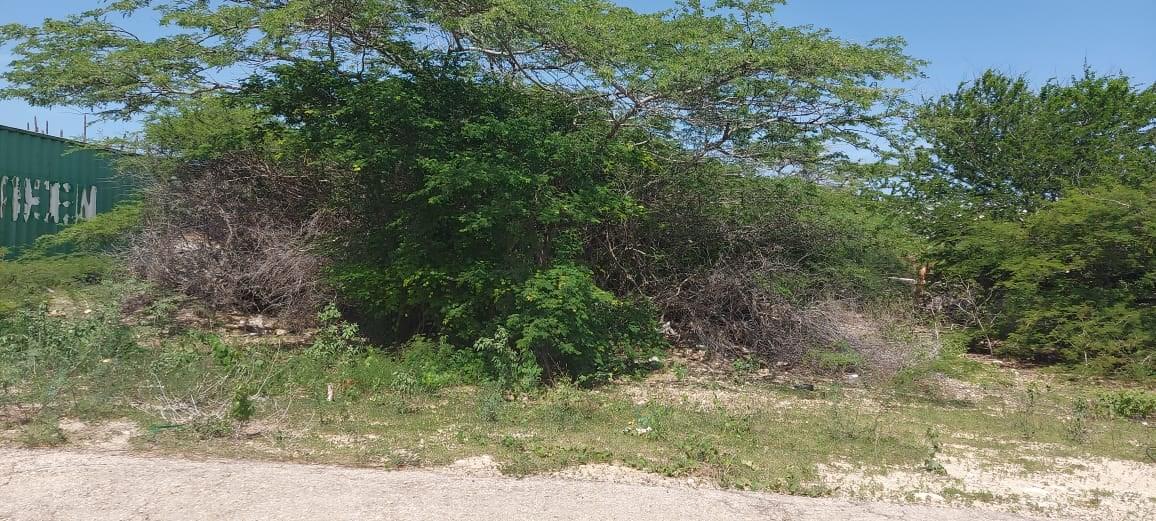 RE/MAX real estate, Aruba, Santa Cruz, Land for sale in Papilon