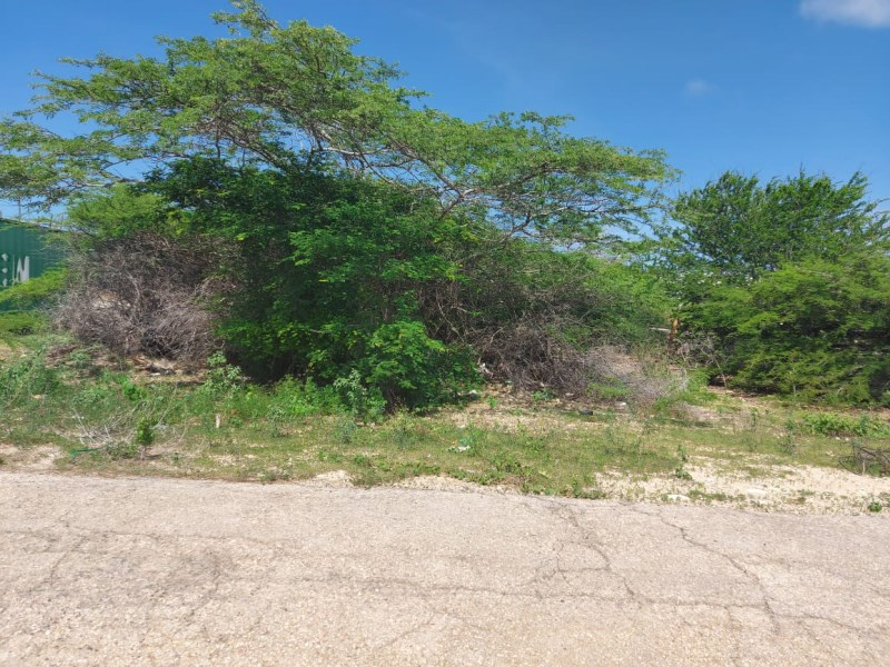 RE/MAX real estate, Aruba, Oranjestad, Papilon plot