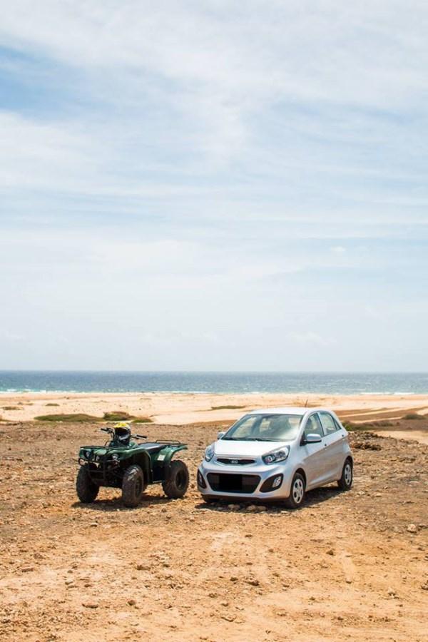 RE/MAX real estate, Aruba, Noord, Car & Off-Road Vehicles Rental Company