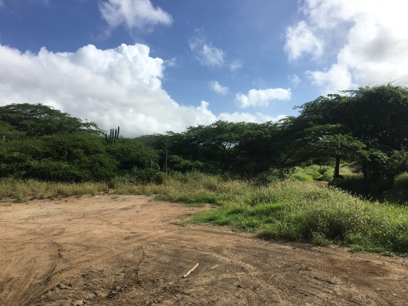 RE/MAX real estate, Aruba, Oranjestad, Camacuri property land 2885m2