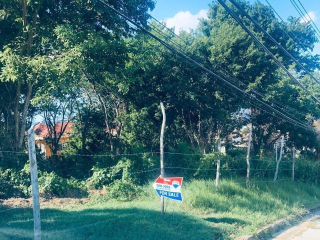 RE/MAX real estate, Jamaica, Little River, DORCHESTER AVENUE St. James Little River