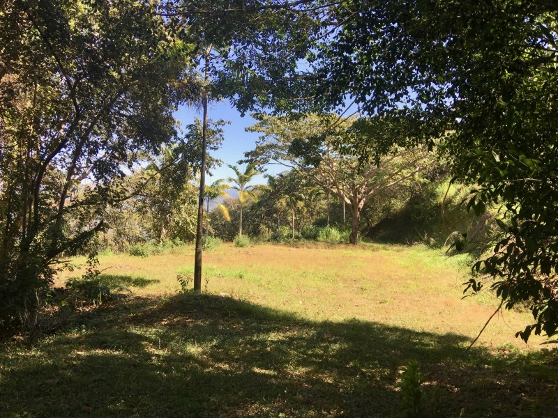 Remax real estate, Costa Rica, Alajuela, Lot for sale more than 1 hectare!