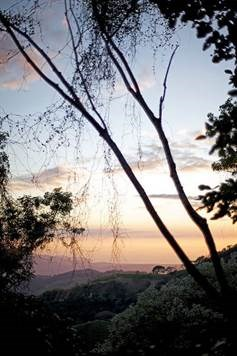 Remax real estate, Costa Rica, Atenas, The land is 7.018 m2 on a ridge which has a flat area