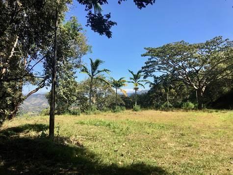 Remax real estate, Costa Rica, Atenas, Big property  in gated community