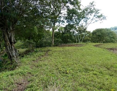 Remax real estate, Costa Rica, Atenas, Property more than 1 hectare