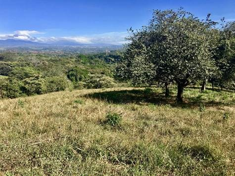 Remax real estate, Costa Rica, Atenas, One of the best views you can find in this area
