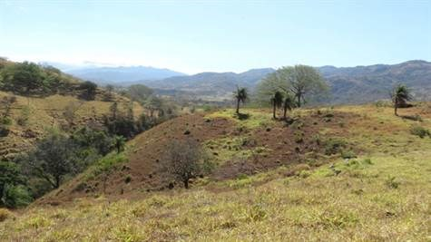 Remax real estate, Costa Rica, Atenas, Large Property At A Low Price