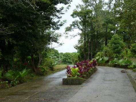 Remax real estate, Costa Rica, Atenas, Estate Lots in Private Gated Community in Atenas