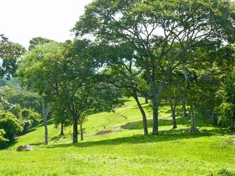 Remax real estate, Costa Rica, Atenas, Panoramic development property with over 5 hectares