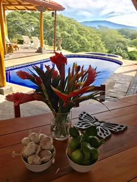 Remax real estate, Costa Rica, Atenas, Lovely home in private community with big private lot