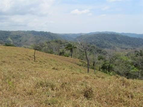 Remax real estate, Costa Rica, Turrubares-San Pablo, 359,587m2 farm with amazing views just 15 minutes from Hermosa Beach