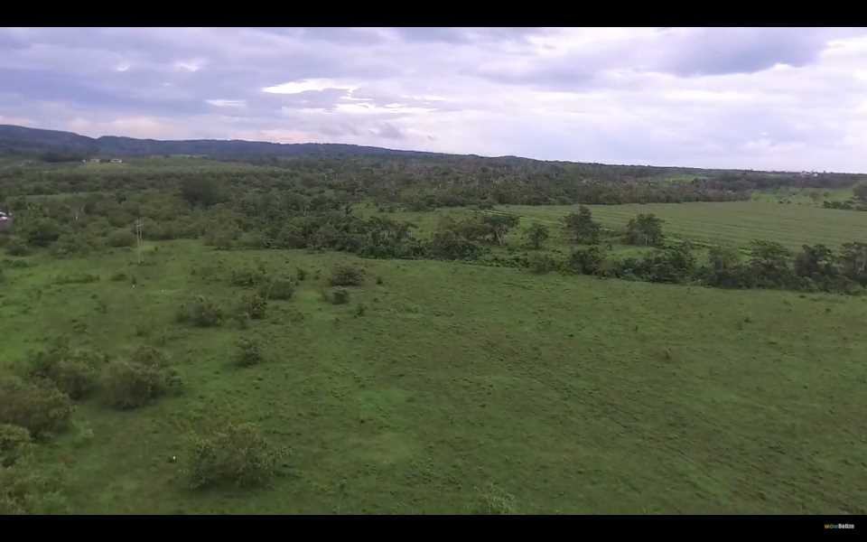 Remax real estate, Belize, Santa Familia, 12 Lots in Santa Familia located between Bullet Tree and Spanish Lookout