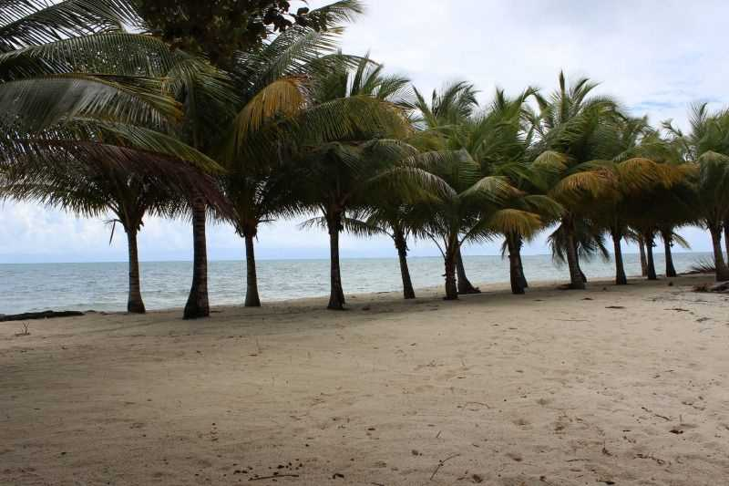 RE/MAX real estate, Belize, Placencia, L6738 - Roadside Lots in Placencia