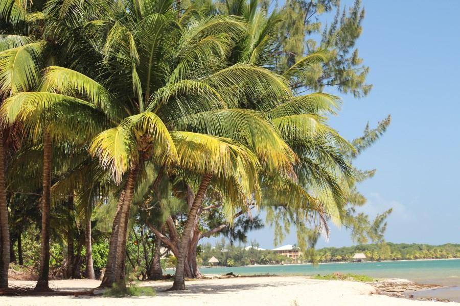 Remax real estate, Belize, Seine Bight, Stunning Beachfront Lot