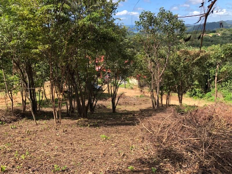Remax real estate, Nicaragua, San Juan del Sur, El Encanto del Sur Panoramic View Lots at Montecito