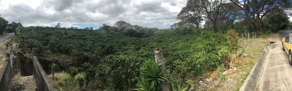 Remax real estate, Costa Rica, Barva - San Pablo, SAN PABLO HEREDIA LOT