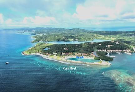 Remax real estate, Honduras, Roatan, Ocean front 5Parrot Tree Plantation