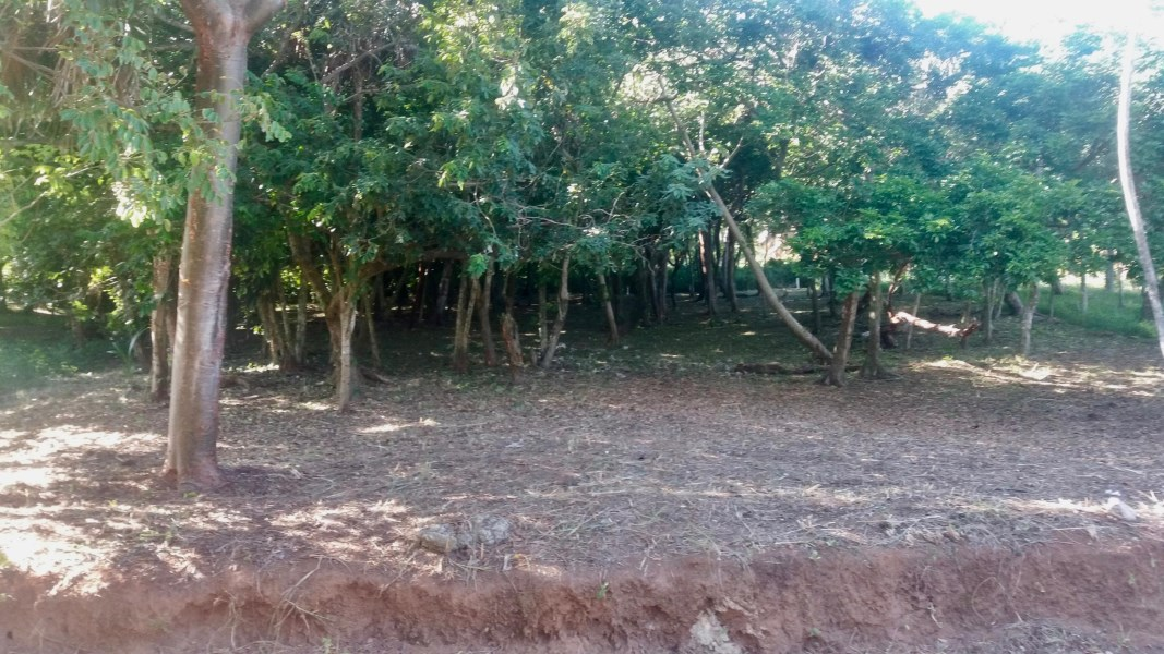 Remax real estate, Honduras, Roatan, 0.42 acre West BayLatitude 16  Lot  9