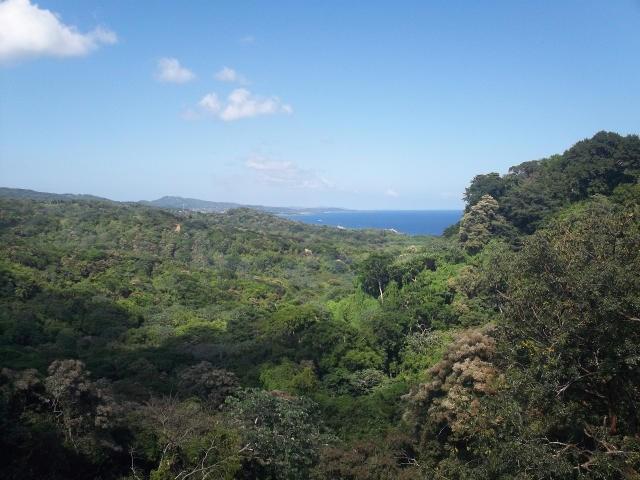 Remax real estate, Honduras, Roatan, .74 Acres West Bay RoatanMoon Cliff  Lot  4