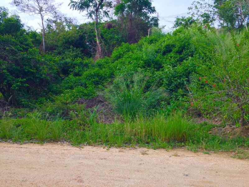 Remax real estate, Honduras, Roatan, Great Lot Ready to Build on