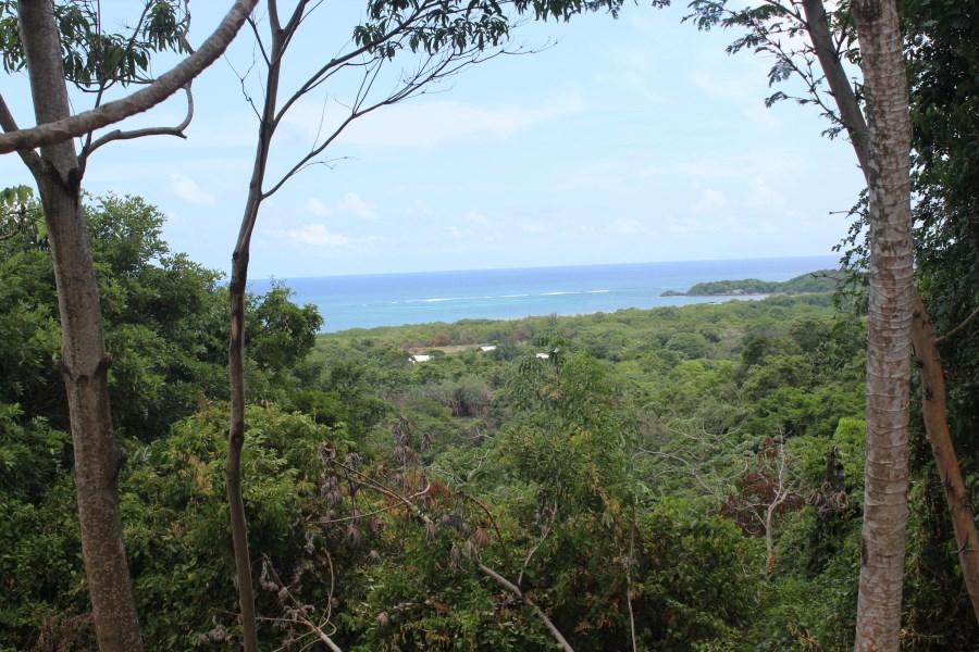 Remax real estate, Honduras, Roatan, 10.3 acres with amazing Views