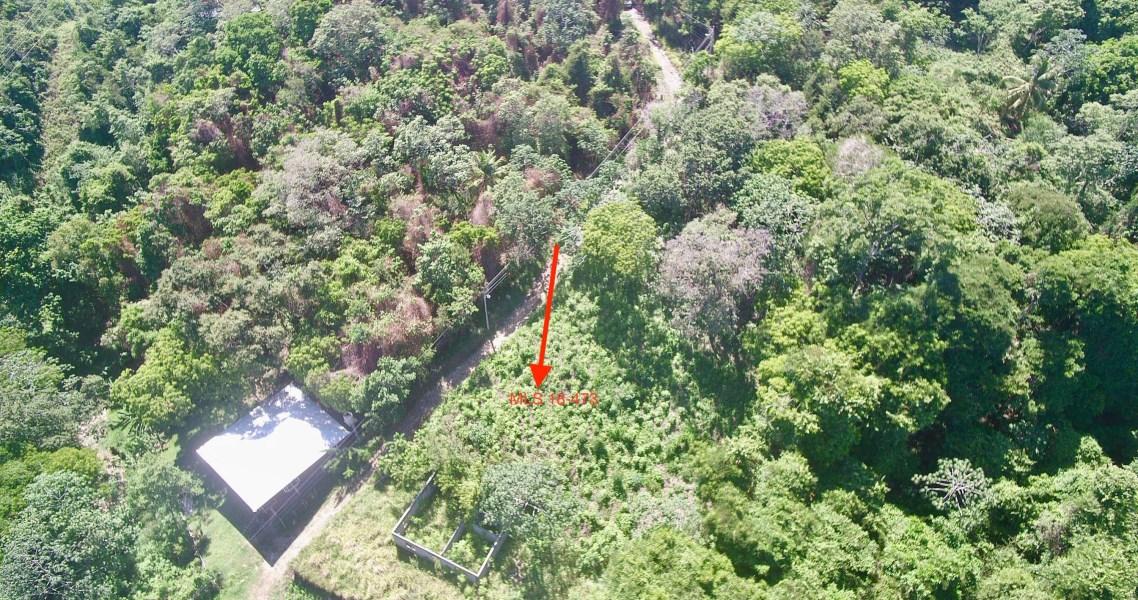 Remax real estate, Honduras, Roatan, Quarter acre Lot