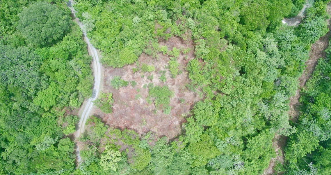 Remax real estate, Honduras, Roatan, Residential home site.Oak Run Value Priced