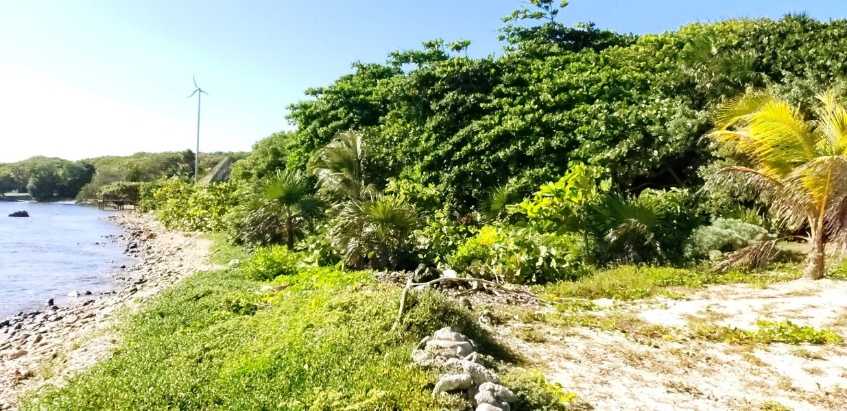 Remax real estate, Honduras, Roatan, Sandy Beachfront Lot
