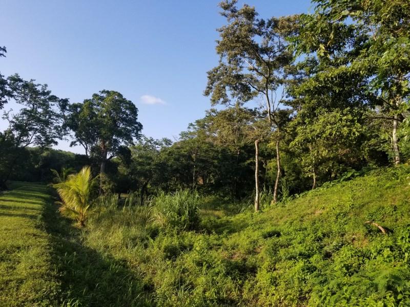 Remax real estate, Honduras, Roatan, Gibson BightAffordable Residential Lot 4