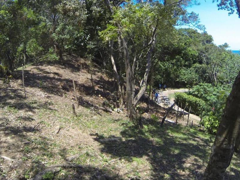 Remax real estate, Honduras, Roatan, Madgunzuni RoadPrivate Jungle  Ocean View