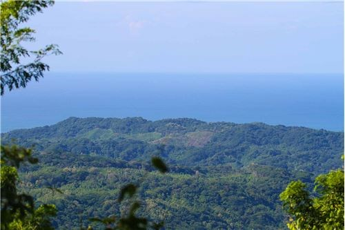 Remax real estate, Costa Rica, Nosara, Mountain Top Oasis Property, Tranquility & Privacy