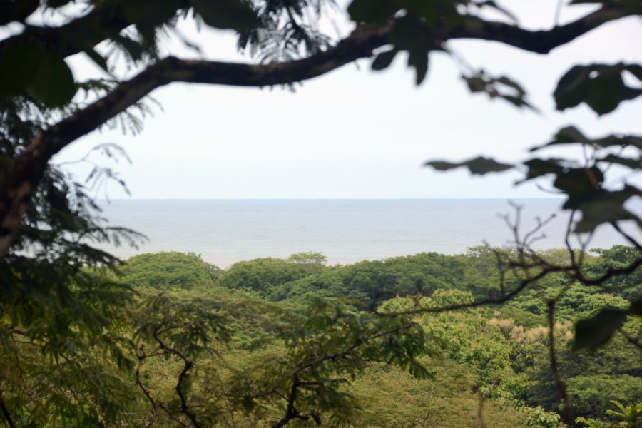 Remax real estate, Costa Rica, Nosara, Large Development or Private Home Ocean View Land Parcel in Playa Pelada - SOLD