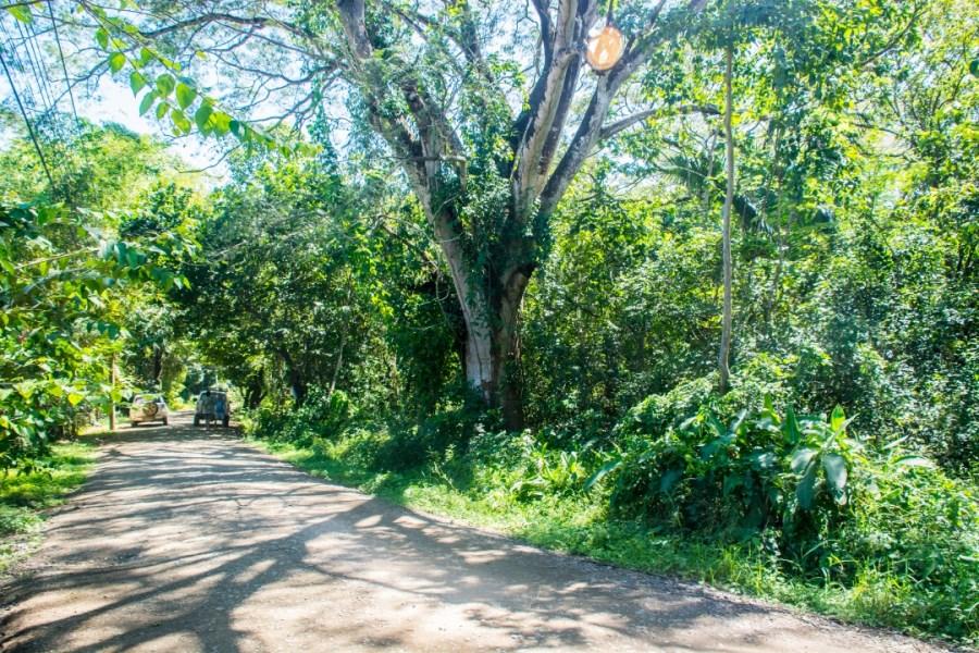 Remax real estate, Costa Rica, Nosara, Lowest Priced Lot in Playa Pelada - SOLD