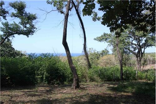 Remax real estate, Costa Rica, Nosara, Punta India View Lot with Walking Beach Access